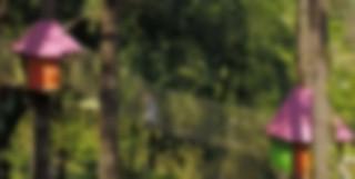phpqyzecn-wow-park-accrobranche