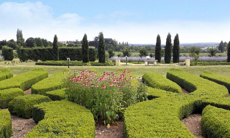 jardin-le-bouquet-parterre-fleuri-2