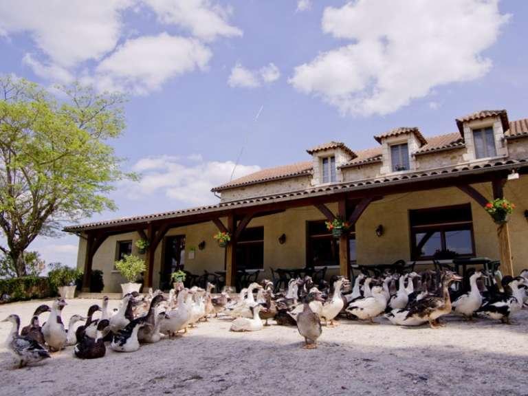 ferme-de-grande-maison-768x576
