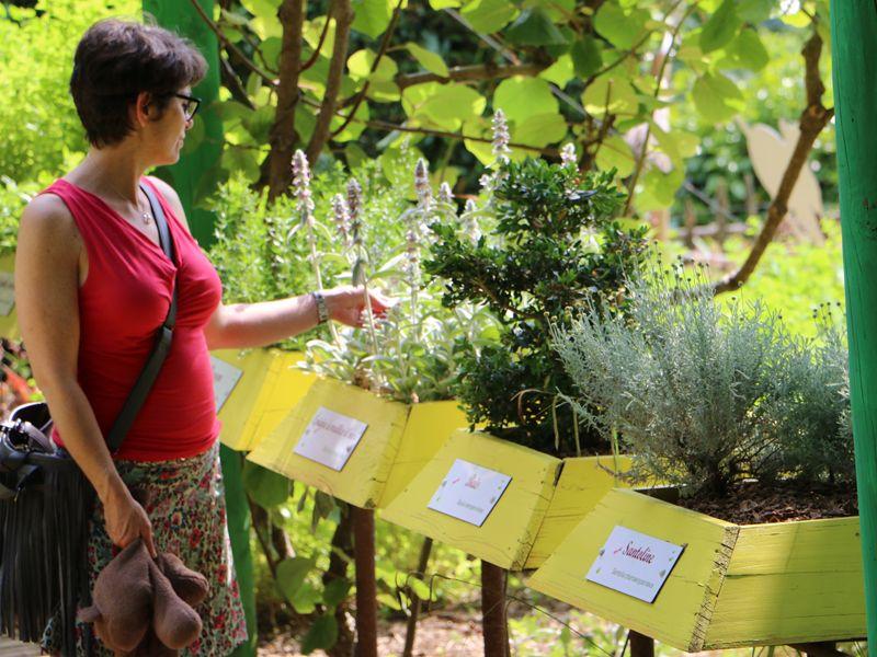 php0ahw4p-les-jardins-panoramiques-de-limeuil-credit-au-fil-du-temps-1