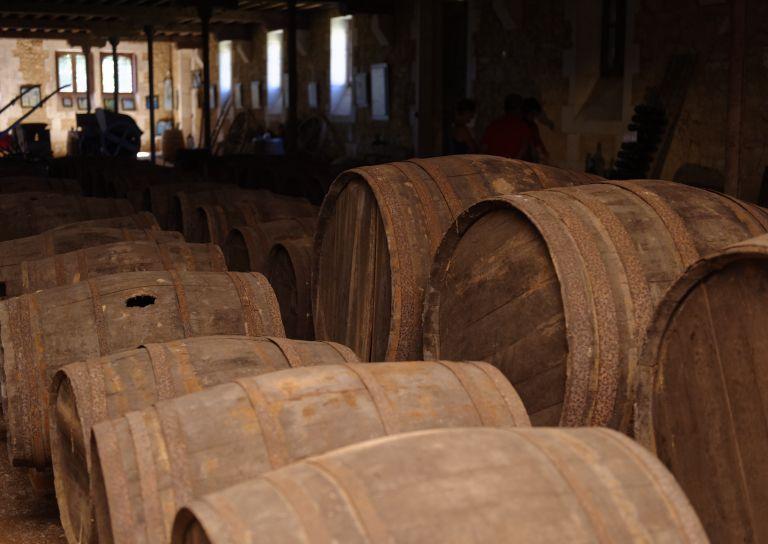 Visite du Musée du Vin et de la Vigne Chai de Lardimalie