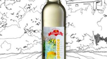 phppprm6m-sirop-experience-tonic-400x200