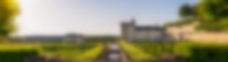 jardins-de-villandry-credit-adt-touraine-jc-coutand-2030-19
