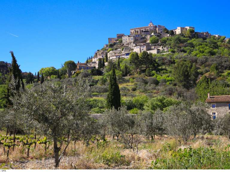 Guided Tours: Night hike, under the stars, alternation between Lourmarin and Cavaillon